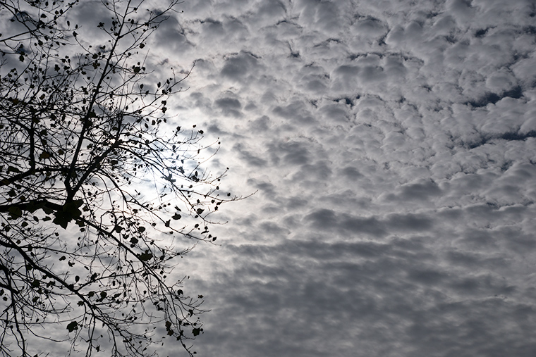 Altocumulus clouds with the sun behind them.